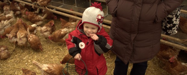 If anyone is going to Blue Hills at Stone Barns in the next few days, you just might eat an egg that was collected by Jack. We drove up to Stone Barns this past Saturday to take part in the Saturday Family Activity, which is egg collecting. After the eggs […]
